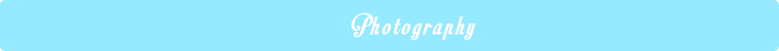 wedding photogrpahers in delhi